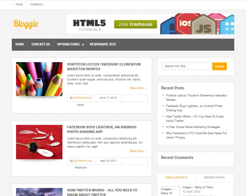 top-100-theme-wordpress-tot-nhat-19