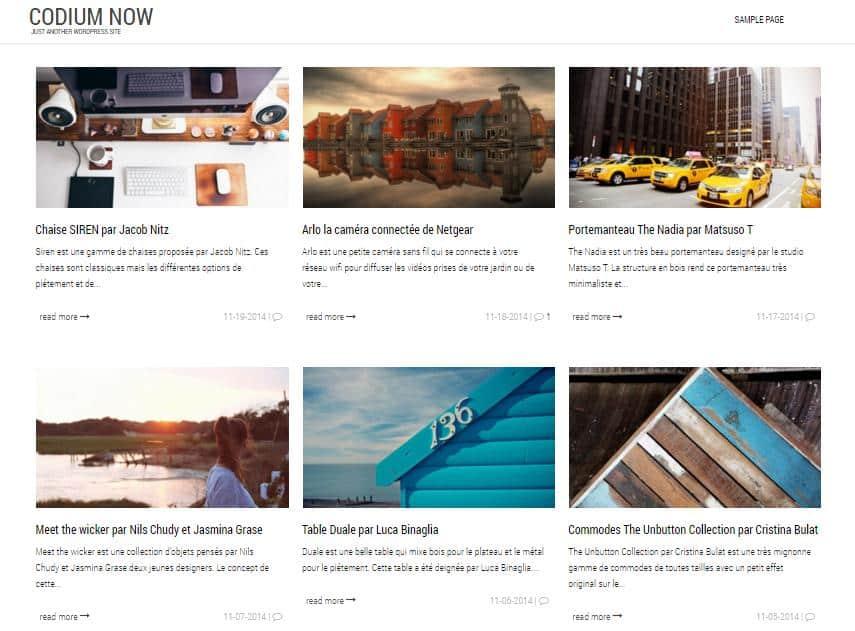 top-100-theme-wordpress-tot-nhat-53