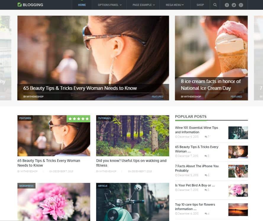 Top 10 themes wordpress trả phí tốt nhất cho blog cá nhân - Ảnh 5