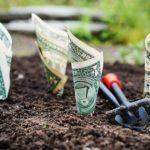 5 lý do bạn không thể thành công trong kiếm tiền trên mạng?