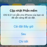 Cách tắt thông báo cập nhật iOS và chặn cập nhật trên iPhone đơn giản