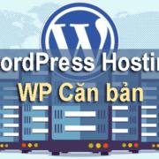 Có nên sử dụng dịch vụ WordPress Hosting của WP Căn bản?