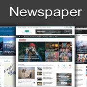 Theme Newspaper: Một theme WordPress hoàn hảo dành cho blog tin tức