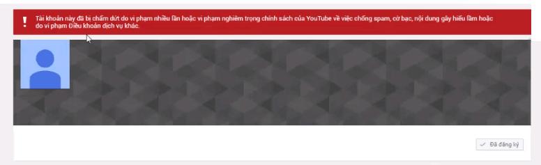 Kênh Youtube bị vô hiệu hóa do spam