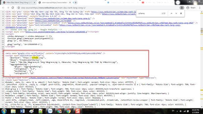 Đoạn mã Schema trên trang Netbuttrian